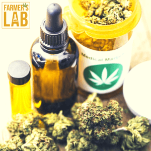 Cannabis Seeds Shipped Directly to Your Door in Saint-Basile-le-Grand, QC. Farmers Lab Seeds is your #1 supplier to growing Cannabis in Saint-Basile-le-Grand, Quebec.