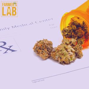 Marijuana Seeds Shipped Directly to Burnie, TAS. Farmers Lab Seeds is your #1 supplier to growing Marijuana in Burnie, Tasmania.