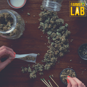 Marijuana Seeds Shipped Directly to Edwardsville, IL. Farmers Lab Seeds is your #1 supplier to growing Marijuana in Edwardsville, Illinois.