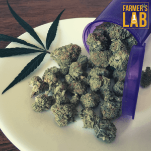 Marijuana Seeds Shipped Directly to Lambertville, MI. Farmers Lab Seeds is your #1 supplier to growing Marijuana in Lambertville, Michigan.