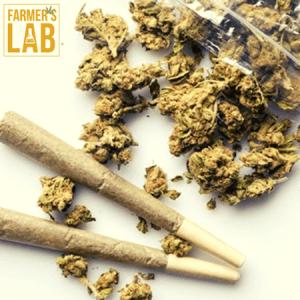 Marijuana Seeds Shipped Directly to Meridian, ID. Farmers Lab Seeds is your #1 supplier to growing Marijuana in Meridian, Idaho.