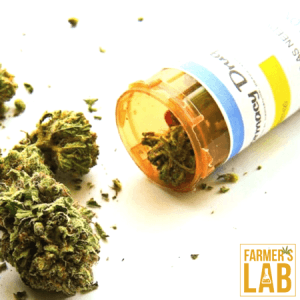 Marijuana Seeds Shipped Directly to Milwaukee, WI. Farmers Lab Seeds is your #1 supplier to growing Marijuana in Milwaukee, Wisconsin.