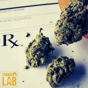 Marijuana Seeds Shipped Directly to Rimouski, QC. Farmers Lab Seeds is your #1 supplier to growing Marijuana in Rimouski, Quebec.