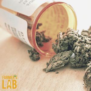 Marijuana Seeds Shipped Directly to Thornton, ID. Farmers Lab Seeds is your #1 supplier to growing Marijuana in Thornton, Idaho.