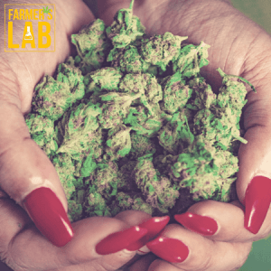 Marijuana Seeds Shipped Directly to Trabuco, CA. Farmers Lab Seeds is your #1 supplier to growing Marijuana in Trabuco, California.