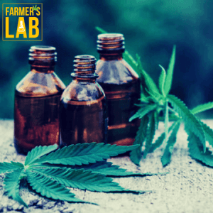 Weed Seeds Shipped Directly to Derby, CT. Farmers Lab Seeds is your #1 supplier to growing weed in Derby, Connecticut.