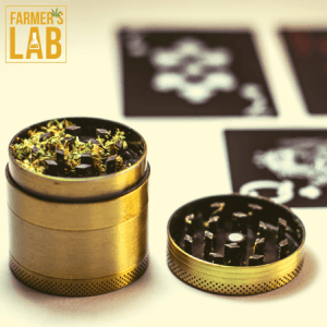 Weed Seeds Shipped Directly to North Canton, OH. Farmers Lab Seeds is your #1 supplier to growing weed in North Canton, Ohio.