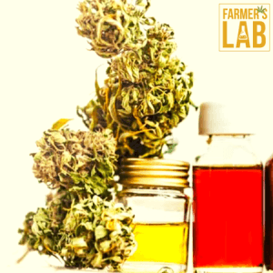 Weed Seeds Shipped Directly to Rosemere, QC. Farmers Lab Seeds is your #1 supplier to growing weed in Rosemere, Quebec.