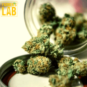 Weed Seeds Shipped Directly to Terrace, BC. Farmers Lab Seeds is your #1 supplier to growing weed in Terrace, British Columbia.