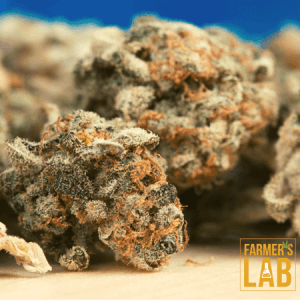 Weed Seeds Shipped Directly to Timmins, ON. Farmers Lab Seeds is your #1 supplier to growing weed in Timmins, Ontario.