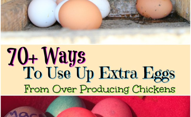 70 Ways To Use Up Extra Eggs From Over Producing Chickens
