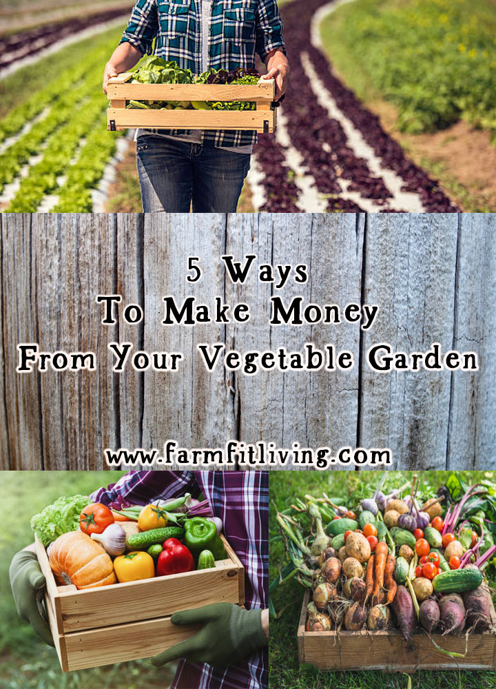 Ways To Make Money From Your Vegetable Garden Farm Fit Living