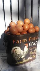 The 1st photo I send on a whatsapp group to advertise my farm fresh eggs
