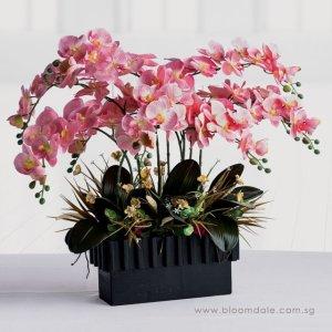 bloomdale florist