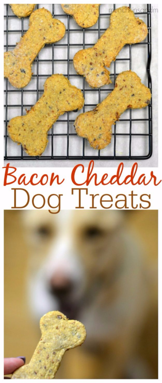 Bacon Cheddar Homemade Dog Treats