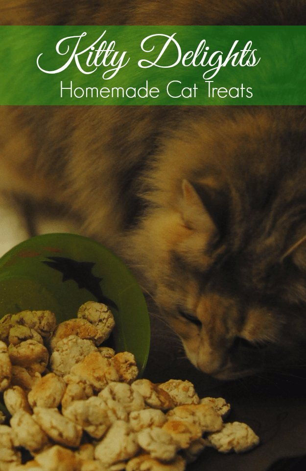 Kitty Delight Homemade Cat Treats