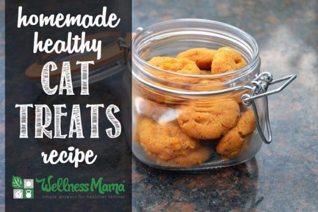 Homemade Healthy Cat Treats