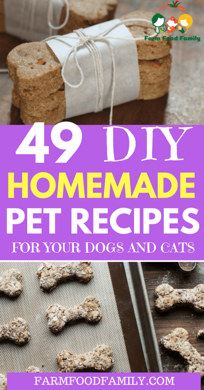 You're looking for recipes for your pets? Here are 49+ best homemade pet recipes for your dogs and cats. All recipes are free, and both cats and dogs will enjoy.