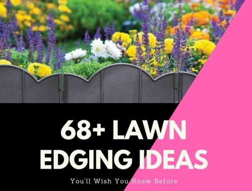 68 Lawn-Edging Ideas That Will Transform Your Garden