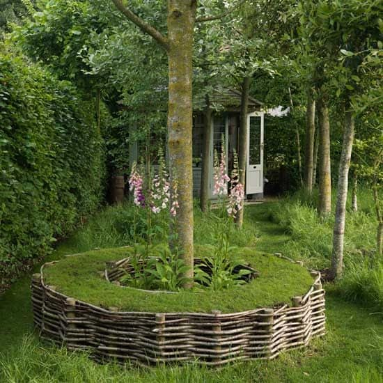DIY Lawn Edging Ideas For Beautiful Landscaping: Turf Seat Around a Tree with Edging