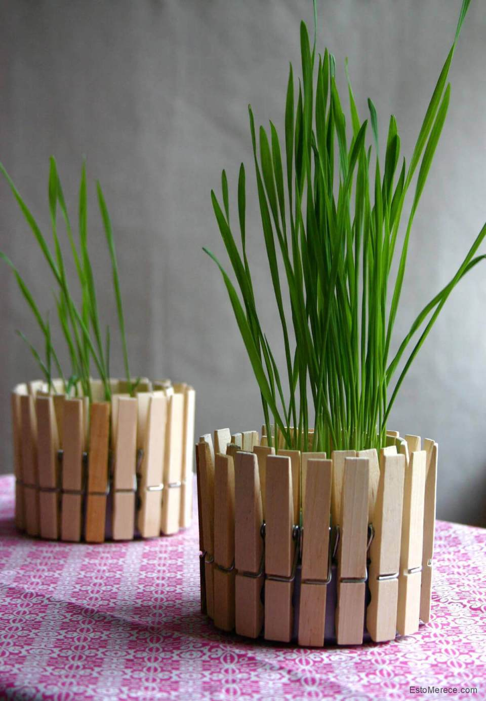 Decorative Grass with Clothespin Fence