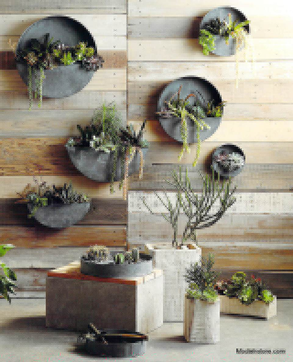 Muted Round Zinc Planters Allow Plants to Shine