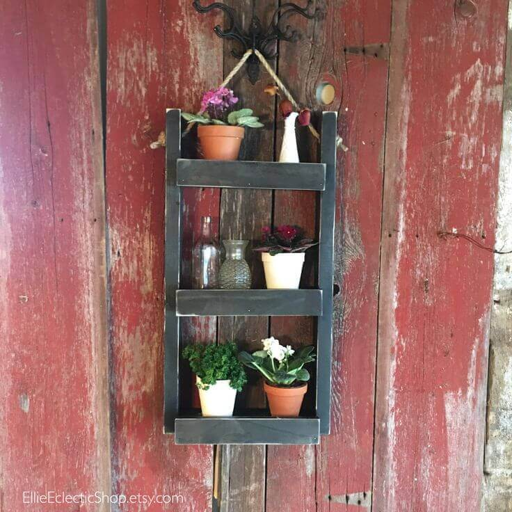 Hang a Garden on the Wall