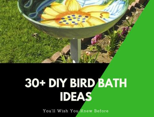 30+ Cute DIY Bird Bath Ideas That Will Enhance Your Yard