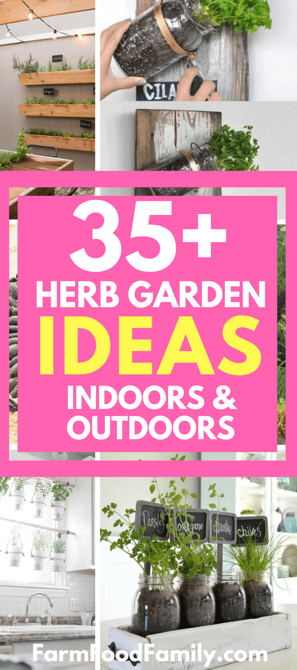 Check out these 35 Creative Herb Garden Ideas That You Can Grow Indoors and Outdoors #herbgarden #gardenideas #gardening #farmfoodfamily