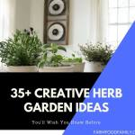 35+ Creative Herb Garden Ideas for Indoors and Outdoors