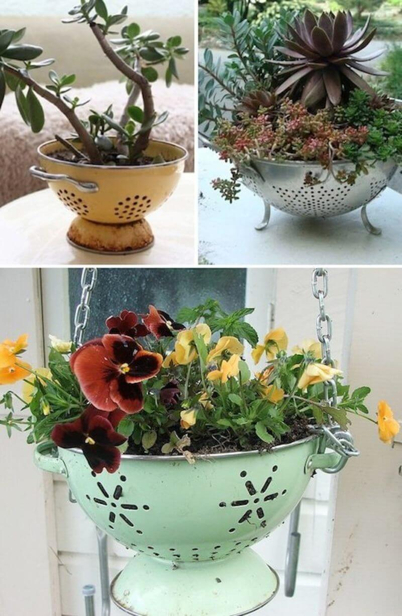 Cute and Easy Colander Planters