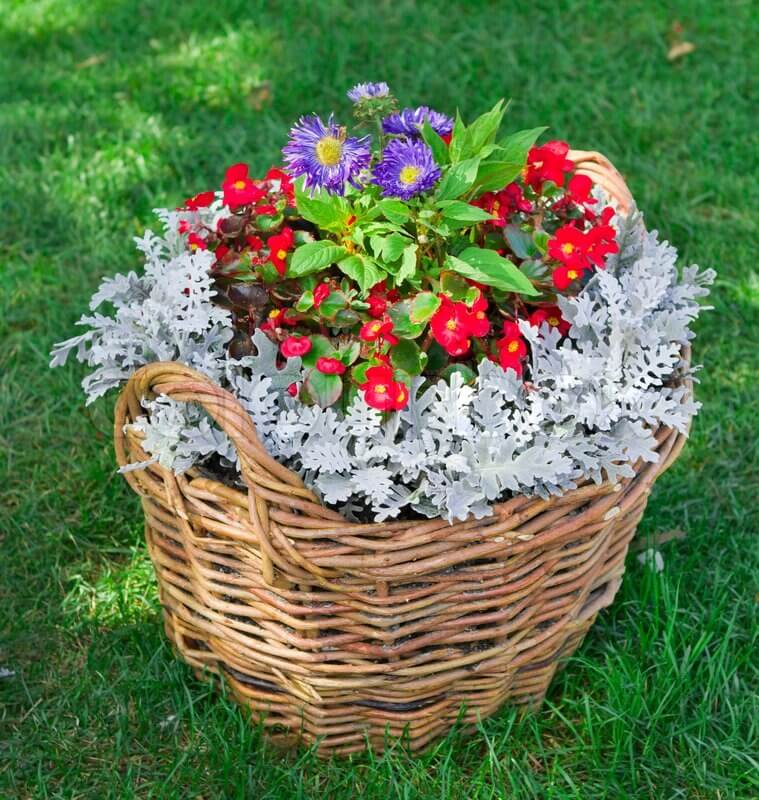 Pretty Wicker Basket Flower Planter