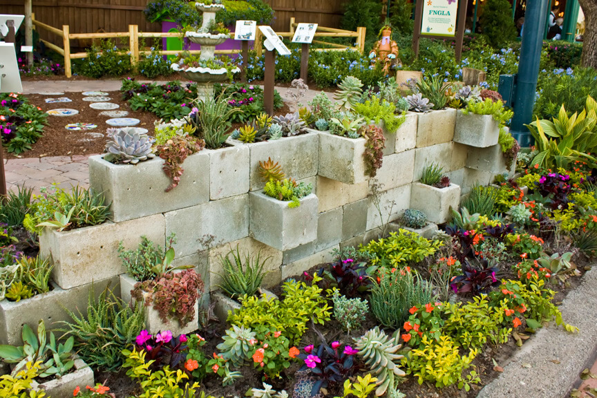 Succulent Garden Ideas: Cinder, Cinder On The Wall