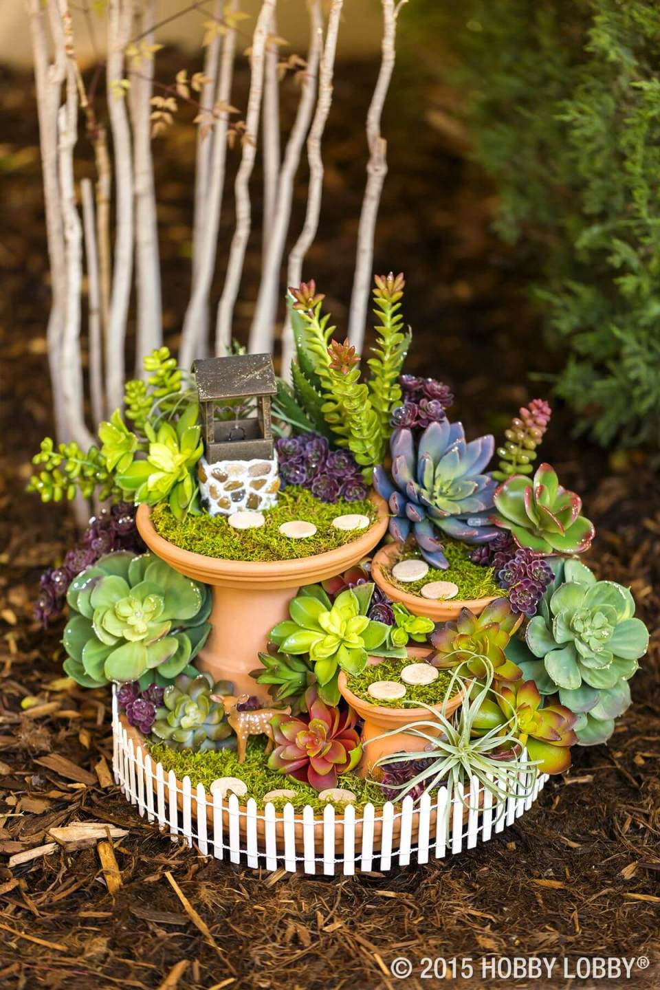Succulent Garden Ideas: I Wish I Were A Wishing Well