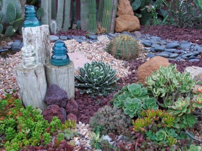 Succulent Garden Ideas: Sea Of Glass