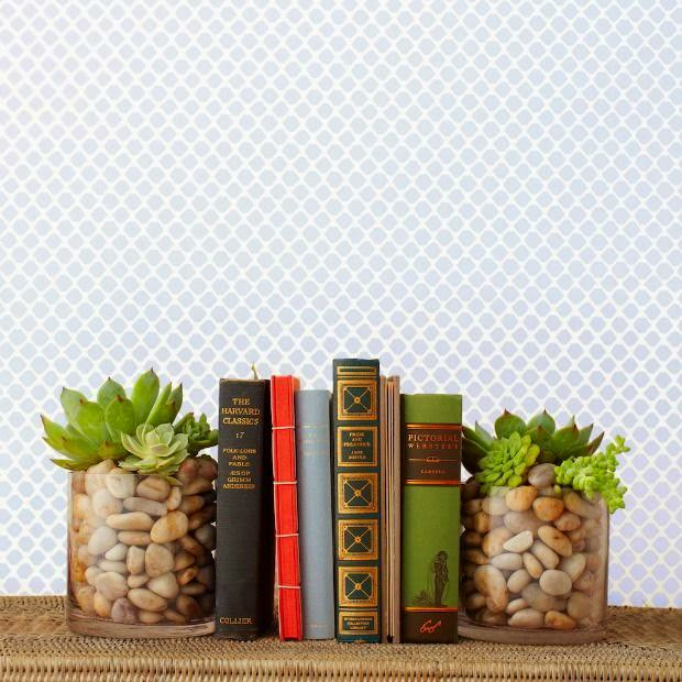 Succulent Garden Ideas: DIY Succulent Bookend