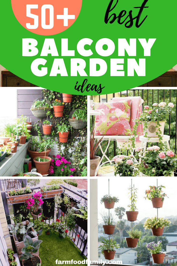 The idea of a balcony garden is grand, but the reality of having your own private balcony garden is better. With 50+ creative ideas and designs, you are sure to find something that works in your budget and space
