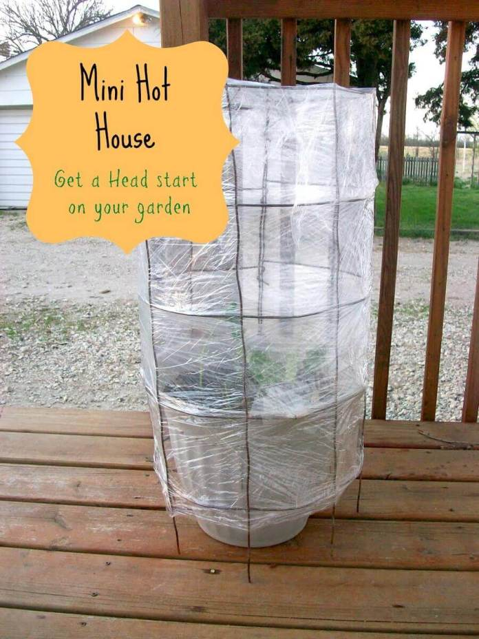 A Trellis Designed to Maintain the Heat | Build a beautiful outdoor greenhouse | Creative Greenhouse DIY plans