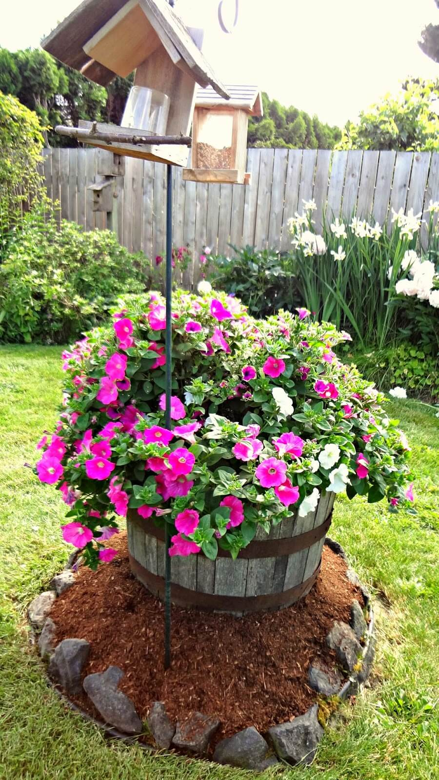 Barrel of Petunias by the Bird Feeder
