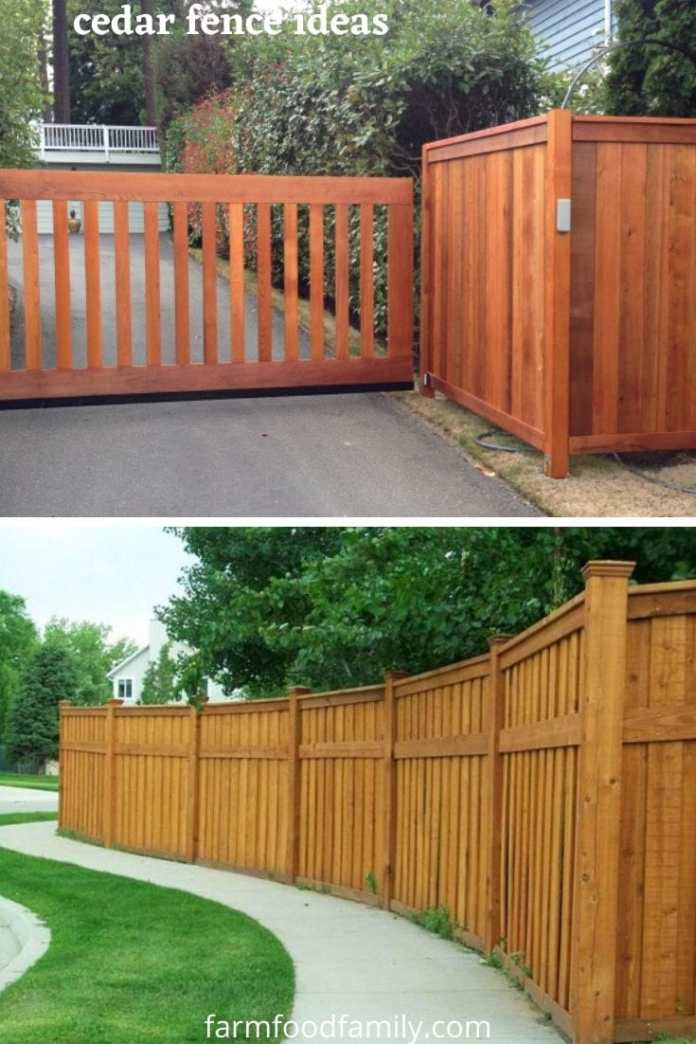 Best cedar fence ideas and designs