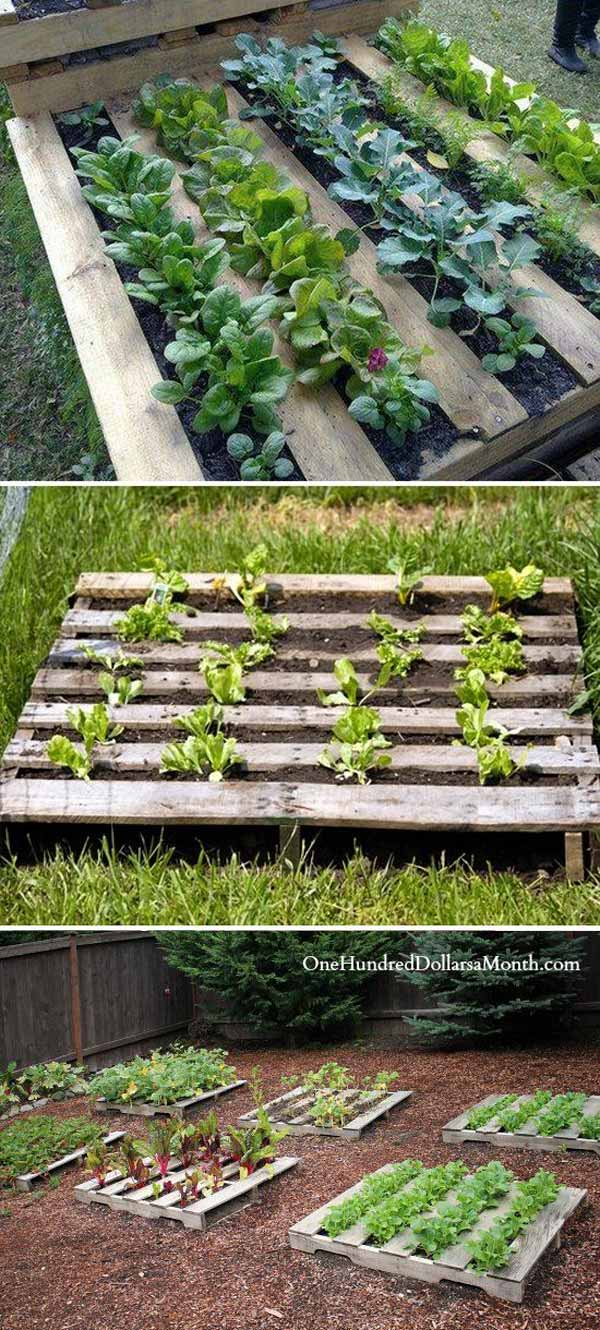 Staple garden cloth on the backside of the pallet fill with dirt and start growing | Clever Gardening Ideas on Low Budget