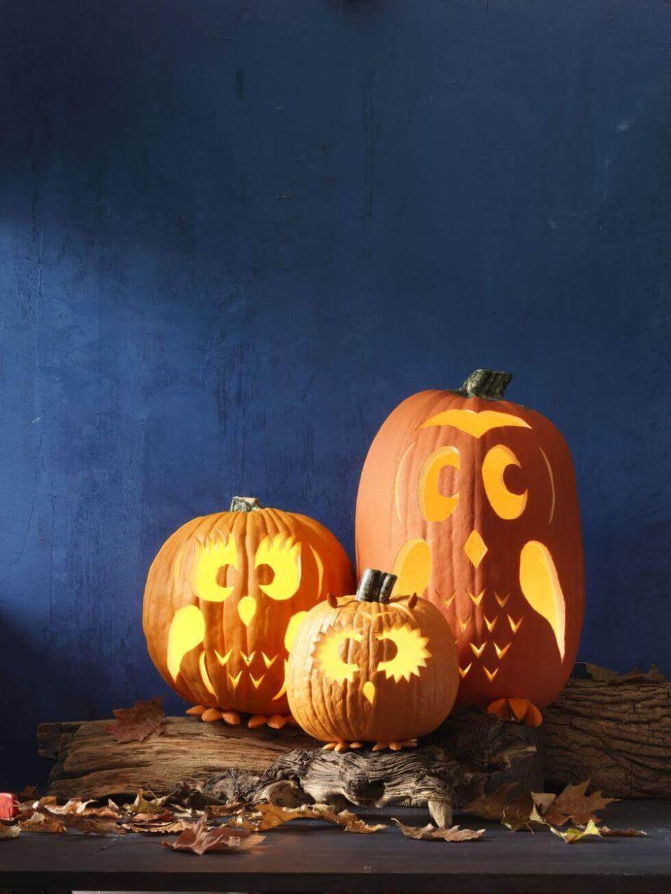 DIY Pumpkin Carving Ideas: Hoo Wants Another Owl Pattern