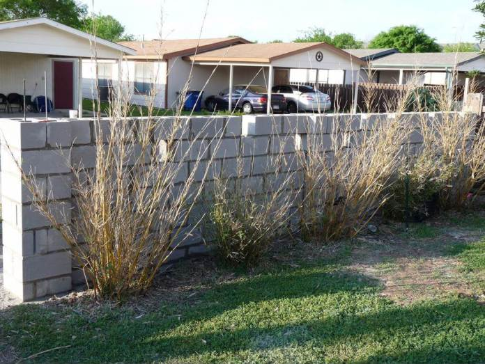 DIY Fence Ideas: DIY Reinforced Concrete Block Wall