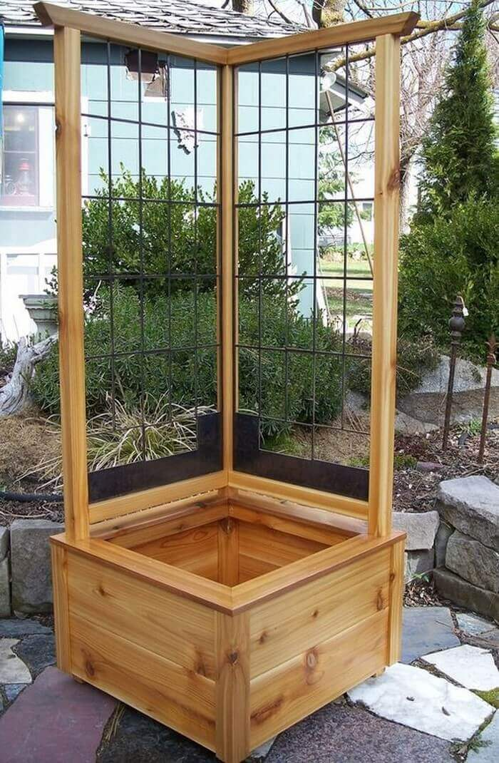 Corner Planter Box with Climbing Trellis