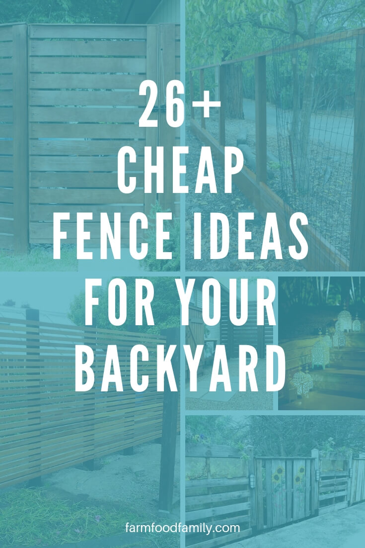 26+ Cheap DIY Fence Ideas for Your Backyard