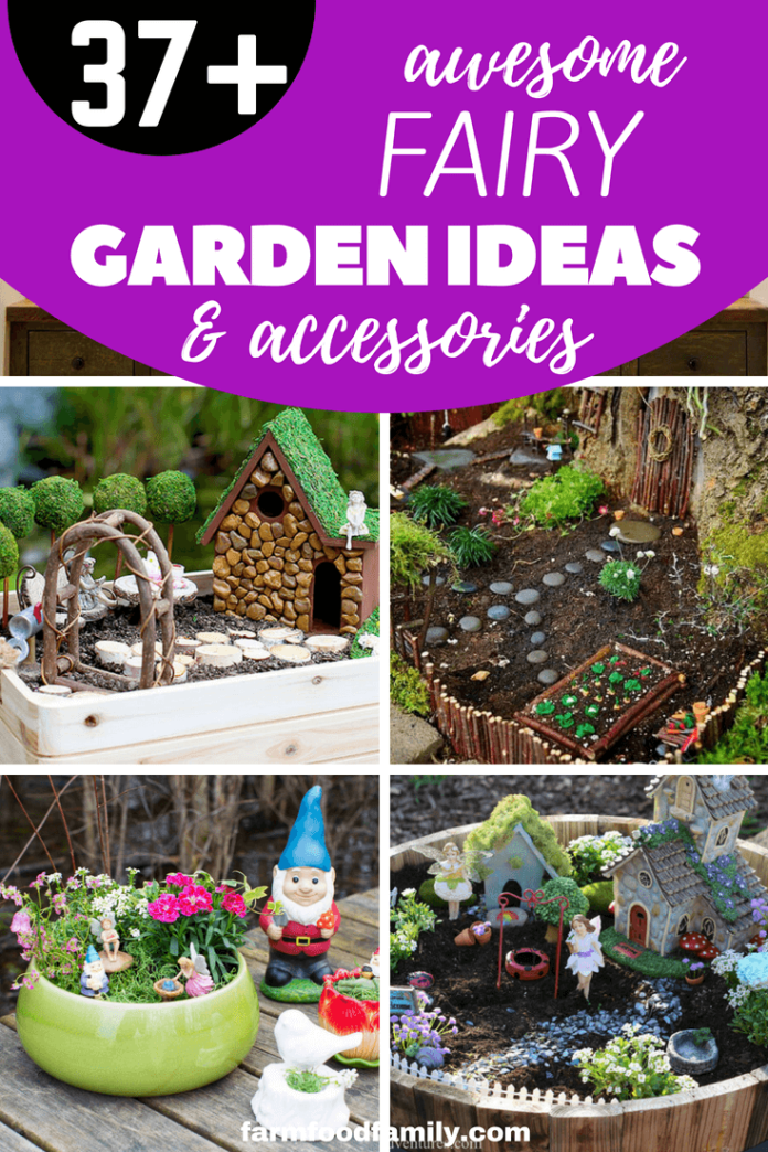 37+ Best Miniature DIY Fairy Garden Ideas & Accessories For Container and Lanscaping