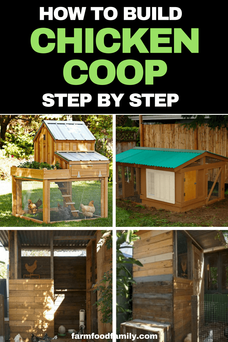 How to build a backyard chicken coop or henhouse step by step