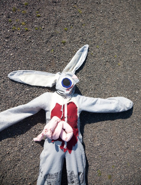 Roadkill Bunny Rabbit Halloween Costume Adult or Child | Animal Halloween Costumes for Kids, Adults - FarmFoodFamily.com