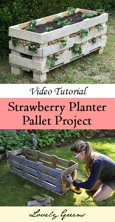 Strawberry Planter Pallet