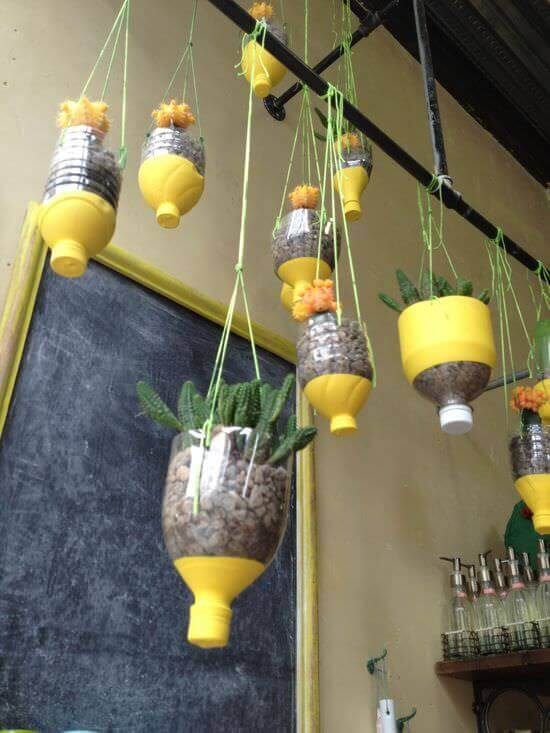 Re-cycled hanging container | Creative Plastic Bottle Vertical Garden Ideas - FarmFoodFamily.com